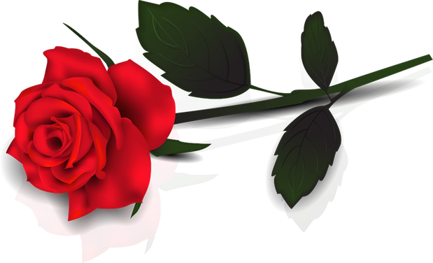 rose-clipart-9